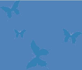 Papillons bleus - Le yoga de Fanny
