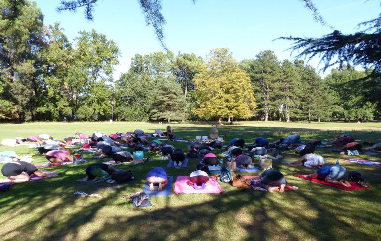 Matinées yoga et méditation - tarifs