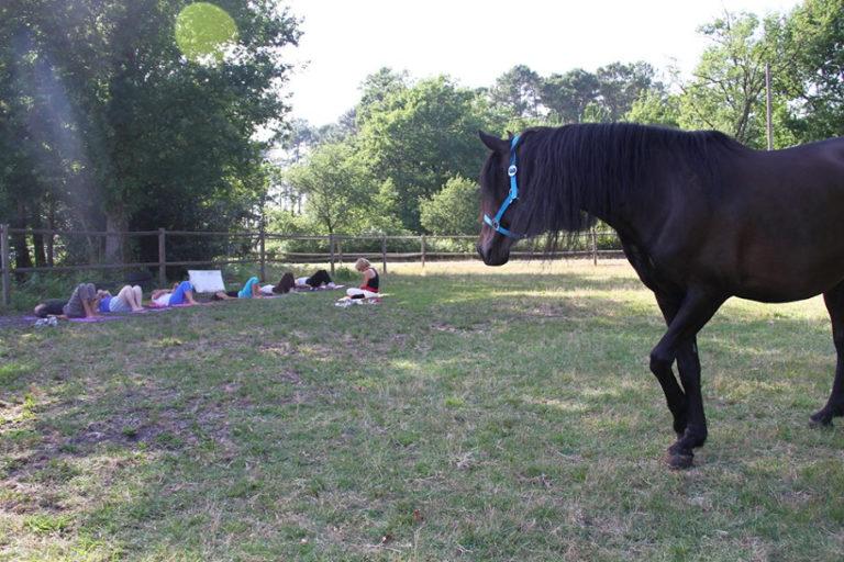 Yoga et cheval - Cheval miroir