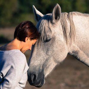Retraite yoga et cheval - Lignan-de-Bazas - novembre 2020